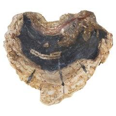 Petrified Wood Dish