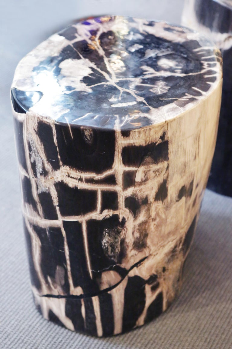 Indonesian Petrified Wood n°C Side Table For Sale