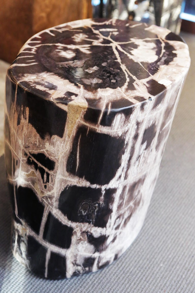 Hand-Crafted Petrified Wood n°C Side Table For Sale