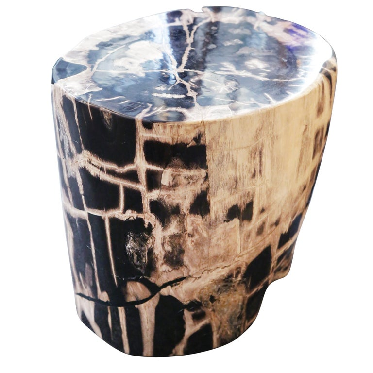 Petrified Wood n°C Side Table For Sale
