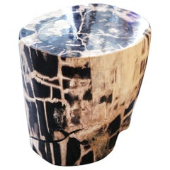 Petrified Wood n°C Side Table