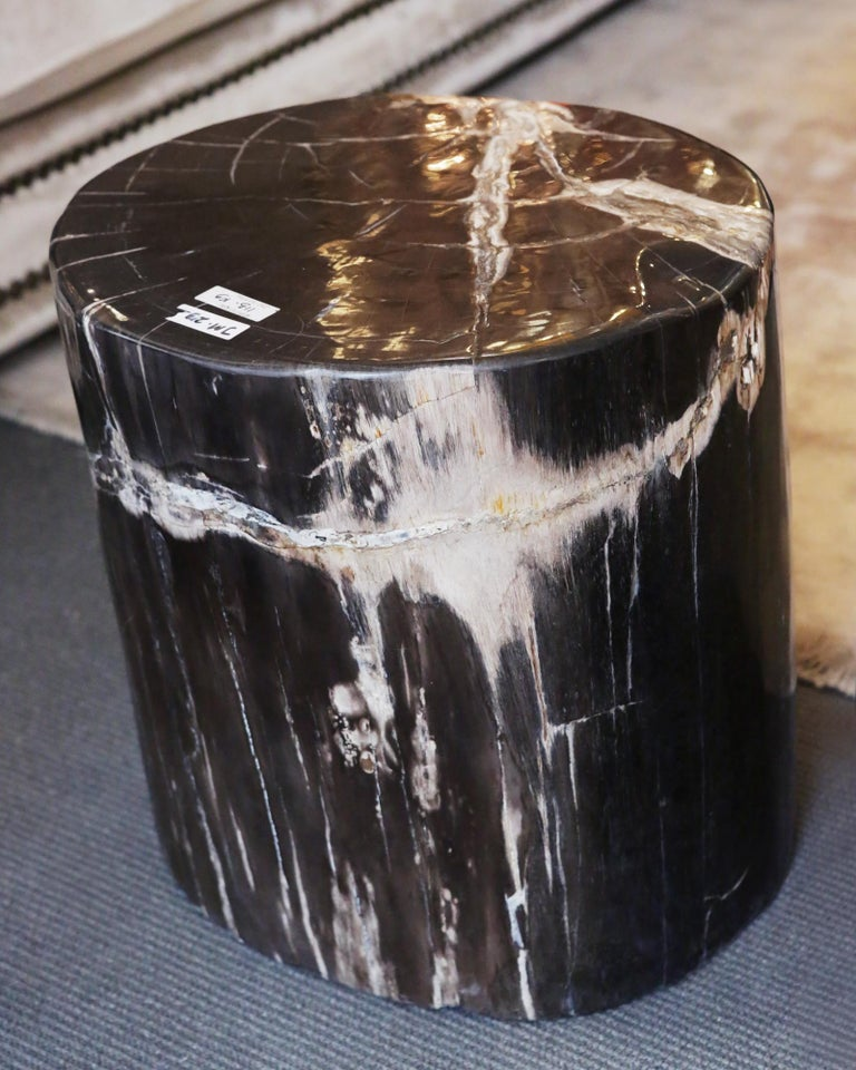 Indonesian Petrified Wood n°D Side Table For Sale