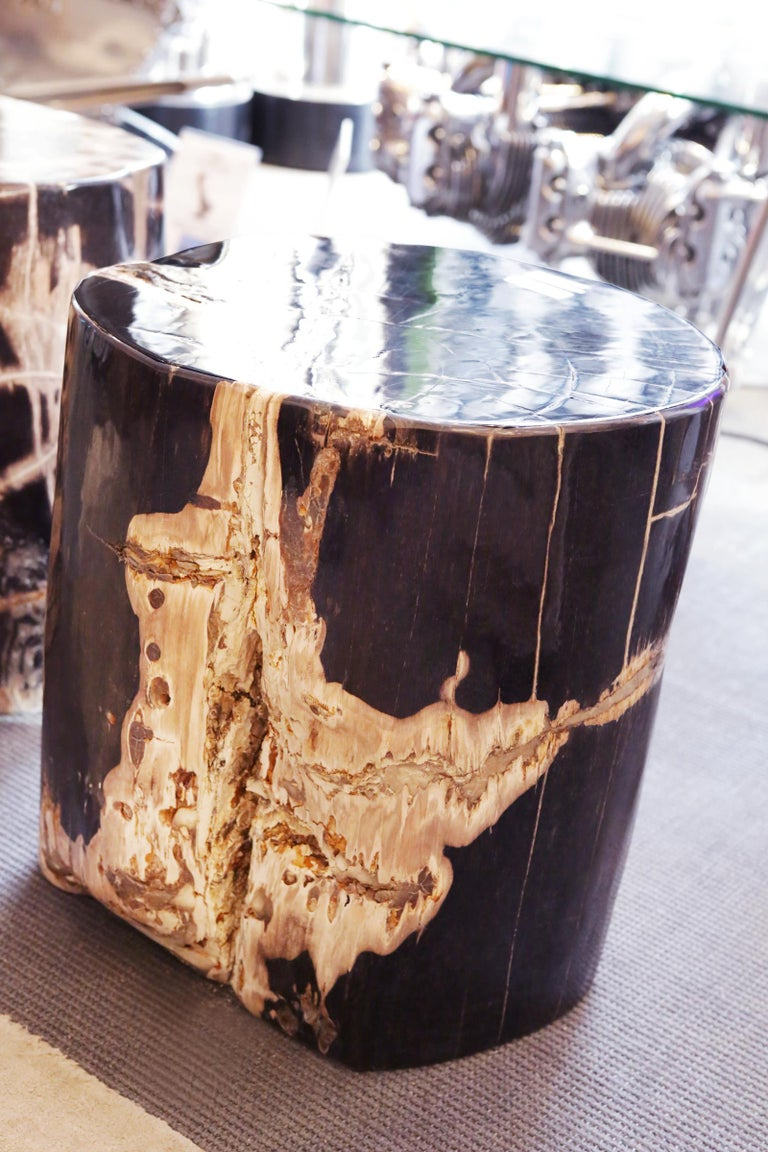Hand-Crafted Petrified Wood n°D Side Table For Sale
