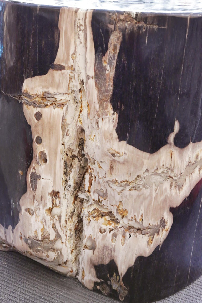 Contemporary Petrified Wood n°D Side Table For Sale
