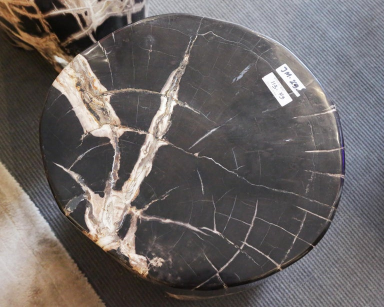 Petrified Wood n°D Side Table For Sale 2