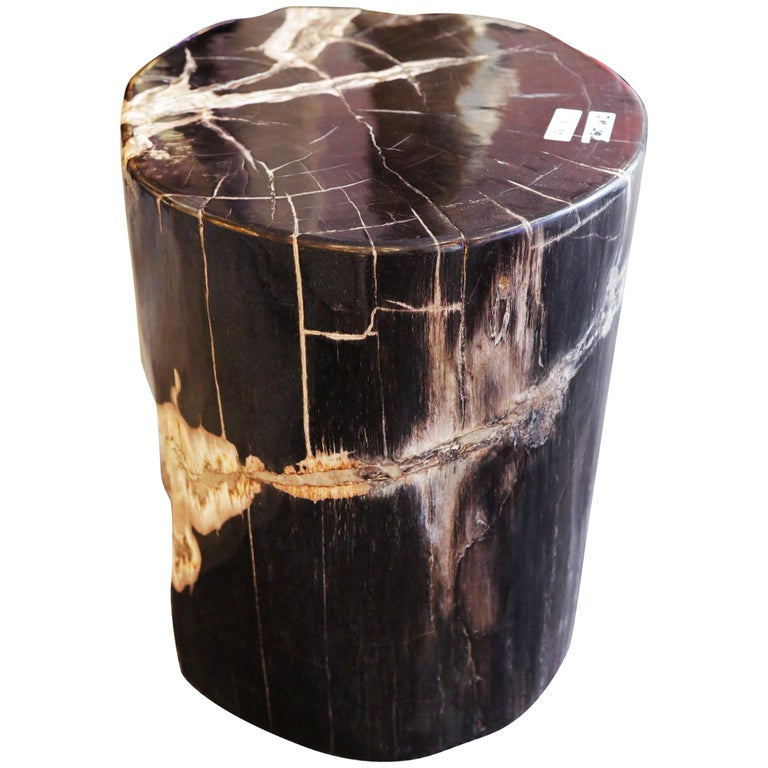 Petrified Wood n°D Side Table For Sale