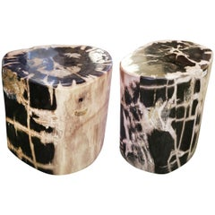 Petrified Wood Set of 2 n°A Side Table