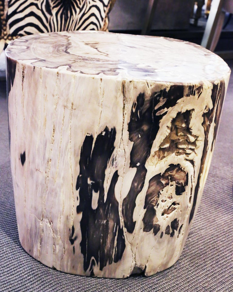 Petrified Wood Set of 2 n°B Side Table For Sale 5
