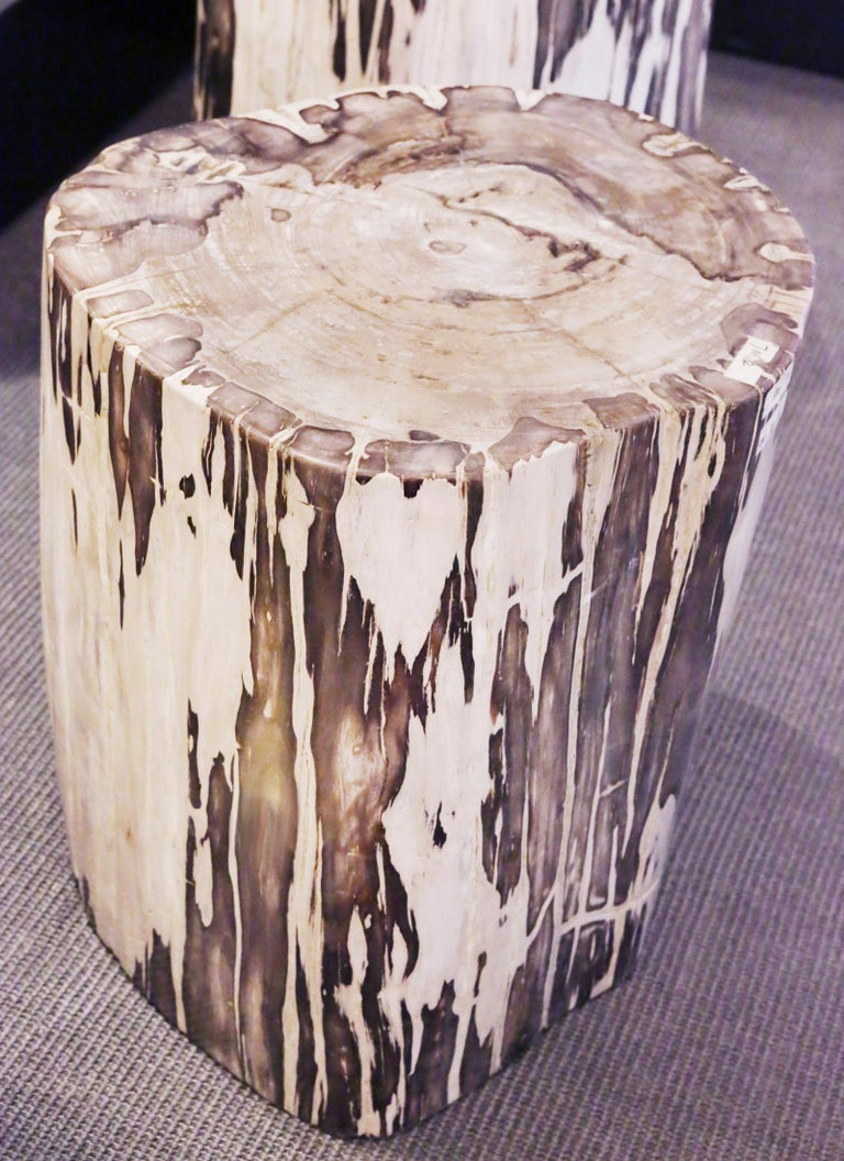 Side table petrified wood set of 2 n°B. Set of two side table in solid petrified wood from Indonesia. Petrified wood has turned into stone. Trees have been buried for many  years under sediment they transitioned into  stone. Each piece is