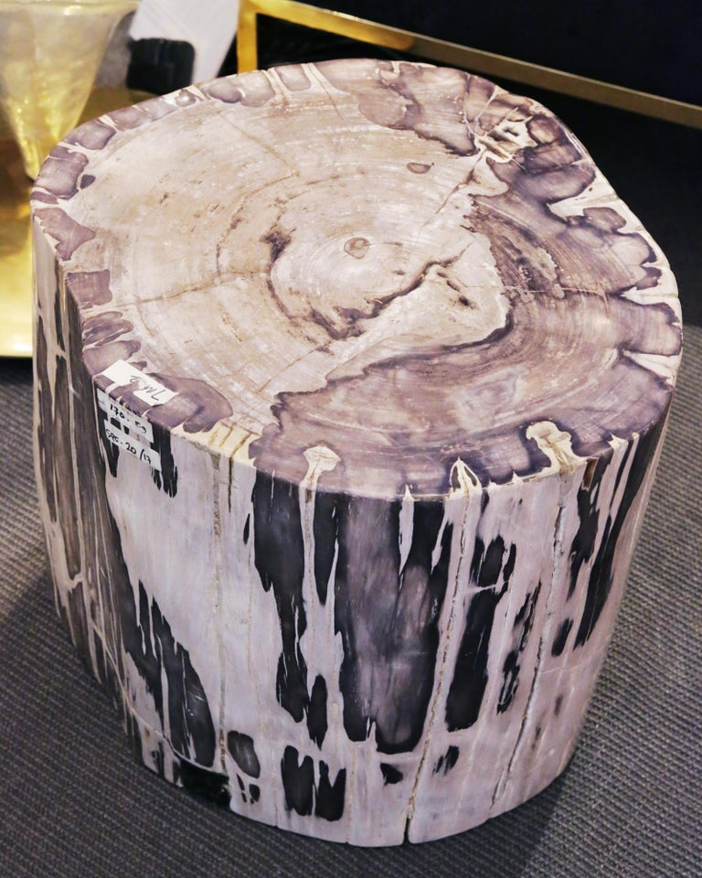 Indonesian Petrified Wood Set of 2 n°B Side Table For Sale