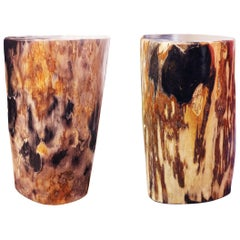 Petrified Wood Set of Two n°D Side Table