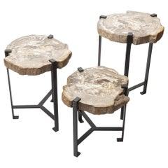Petrified Wood Side Table by Kokon To Zai