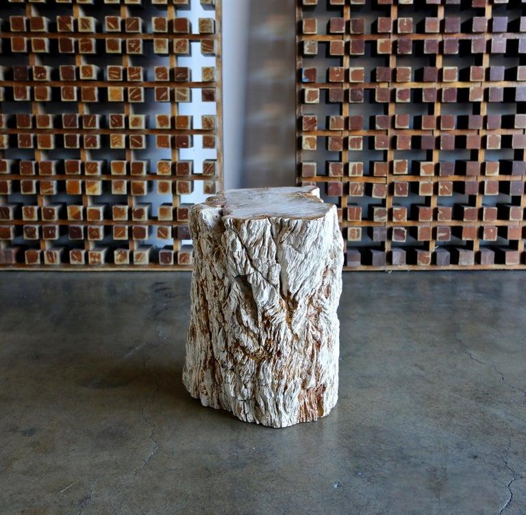 Petrified Wood Side Table 5