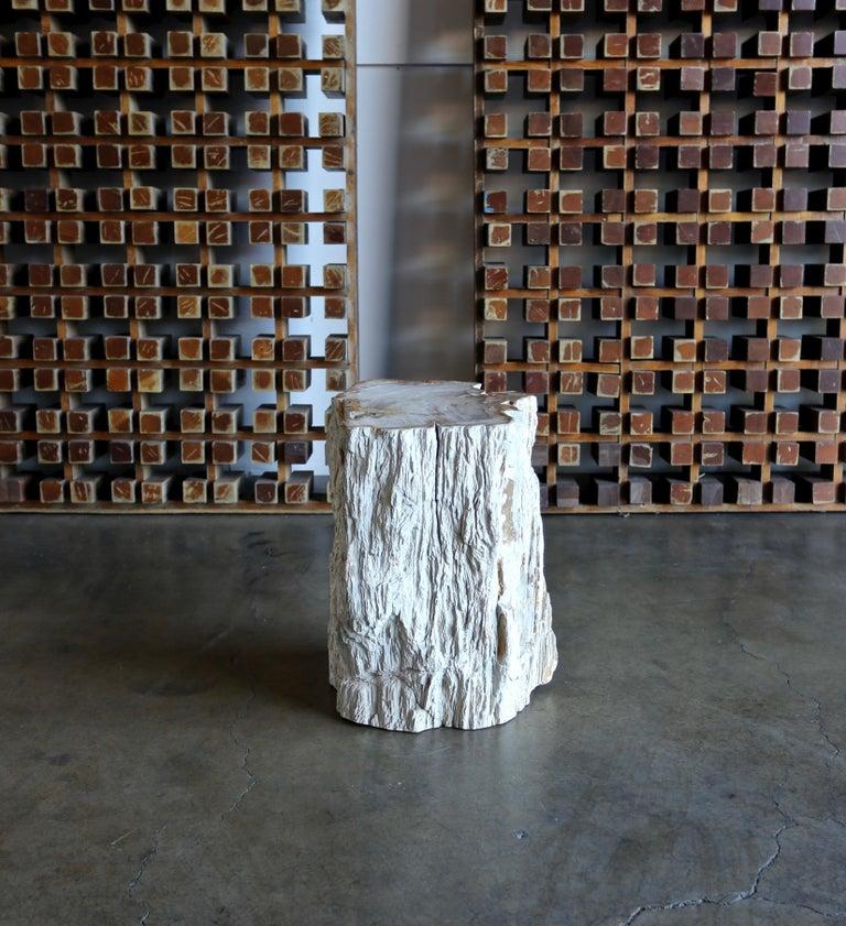 Petrified Wood Side Table 6
