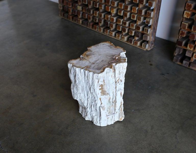 Petrified Wood Side Table 7