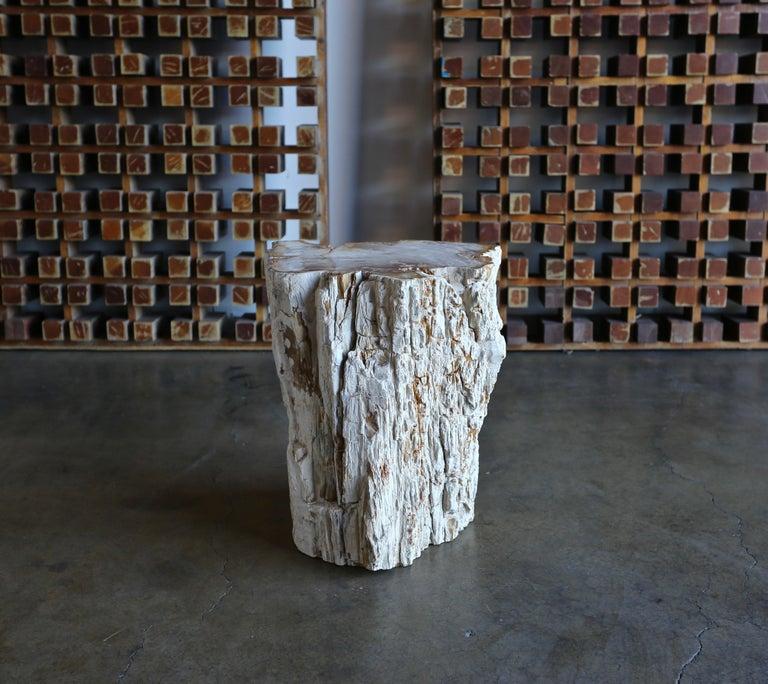 Petrified Wood Side Table 9