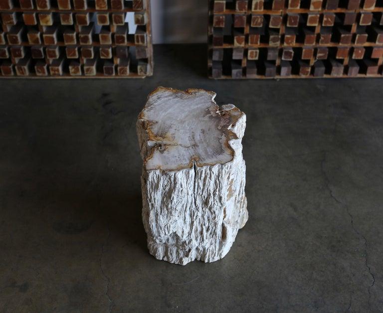 Petrified Wood Side Table 10