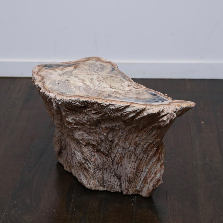 1970s era side table made from a large cross section of a fossilized tree trunk with oxide-red and blue-grey highlights. Purchased for $6500 from Bernd Goeckler Antiques in NYC, this makes the perfect statement piece between or alongside an equally