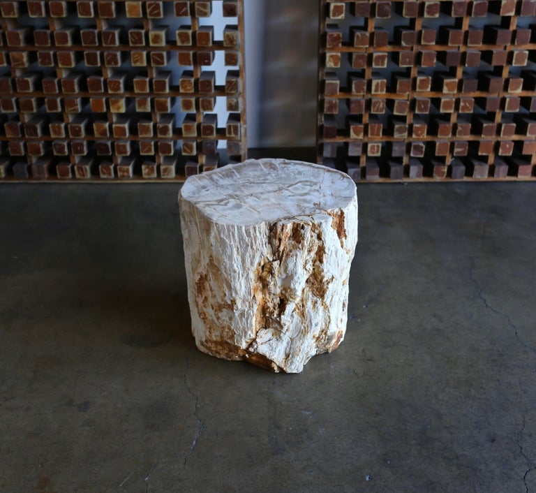 Unknown Petrified Wood Side Table