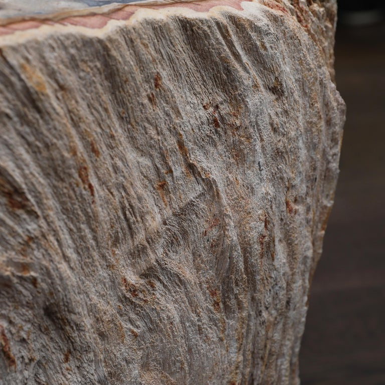 American Petrified Wood Side Table For Sale