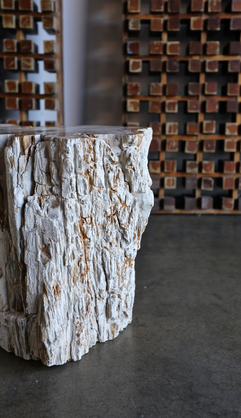 Petrified Wood Side Table In Good Condition In Costa Mesa, CA