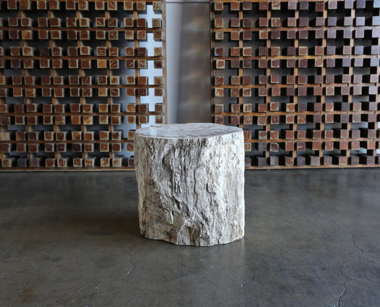 18th Century and Earlier Petrified Wood Side Table
