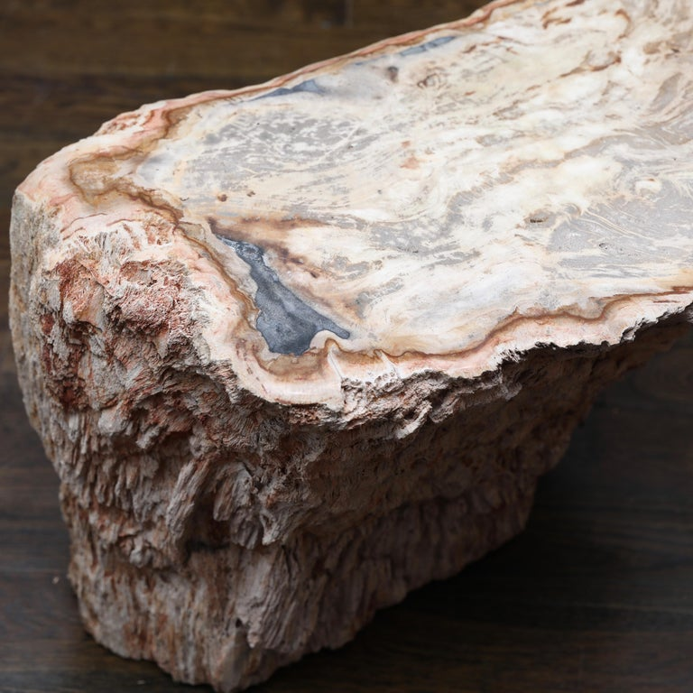 Petrified Wood Side Table In Good Condition For Sale In Darien, CT