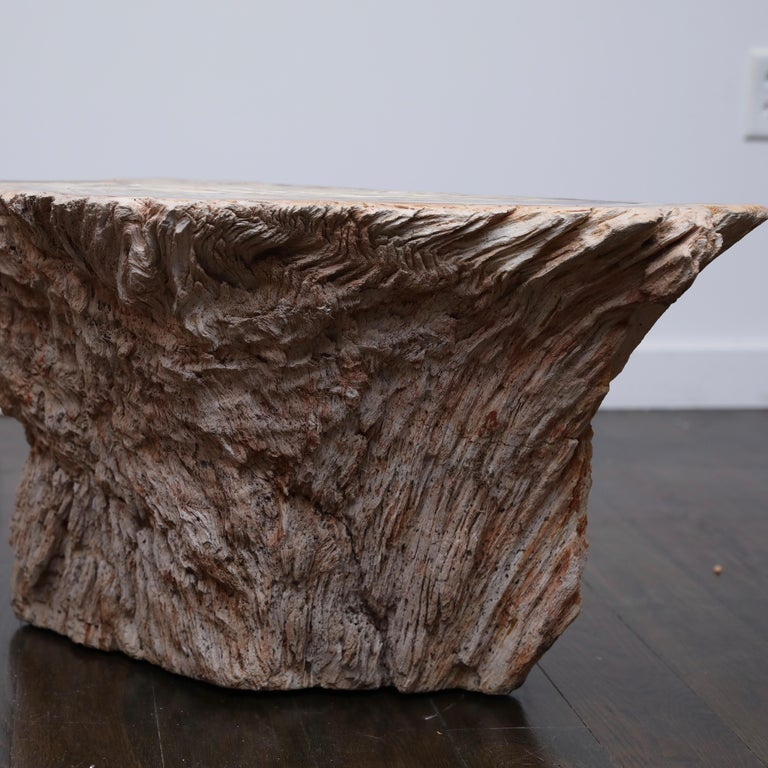 20th Century Petrified Wood Side Table For Sale
