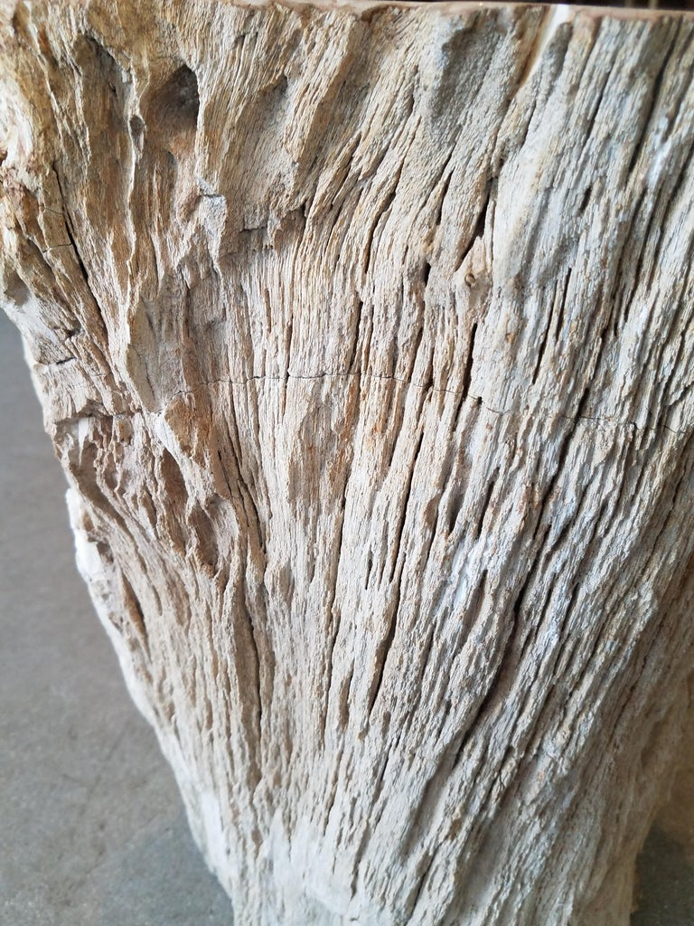 Petrified Wood Side Table For Sale 3