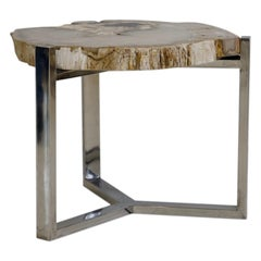 Petrified Wood Side Table on Steel Stand