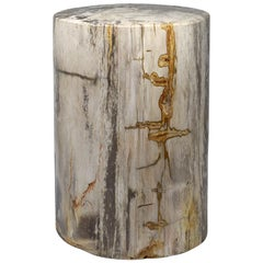 Petrified Wood Stool or Low Pedestal from Indonesia
