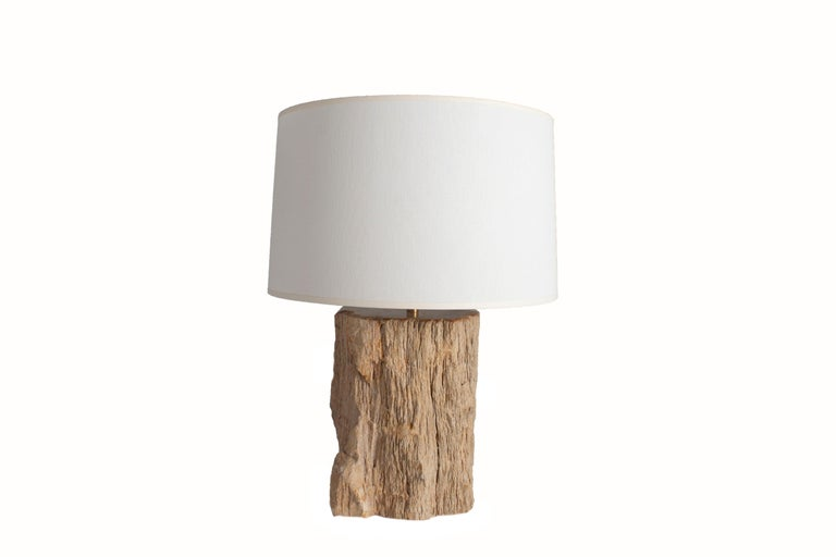 Table lamp made from petrified wood. These lamps are one of a kind and each vary slightly.