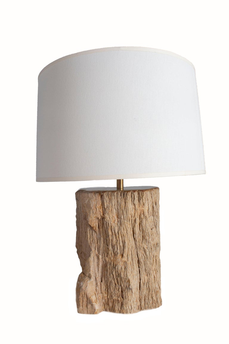 North American Petrified Wood Table Lamp For Sale