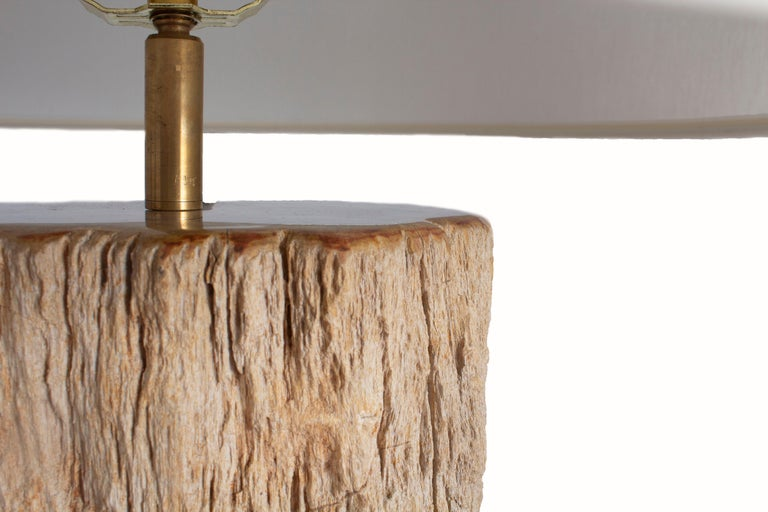 Petrified Wood Table Lamp In New Condition For Sale In Dallas, TX