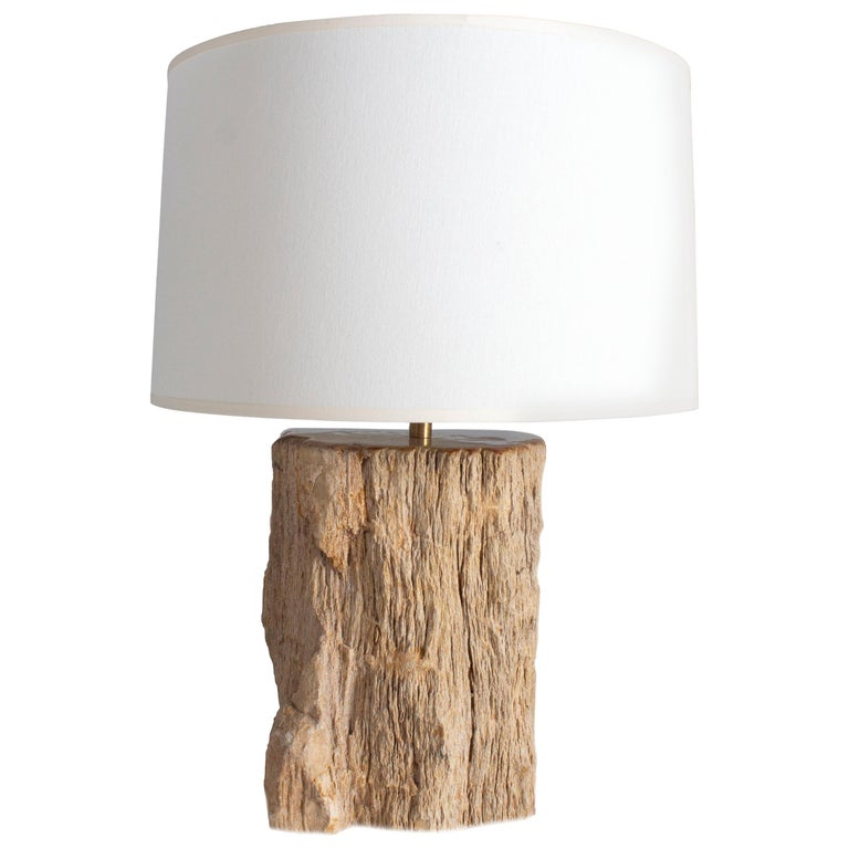 Petrified Wood Table Lamp For Sale