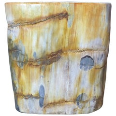 Petrified Wood Trunk Side Table