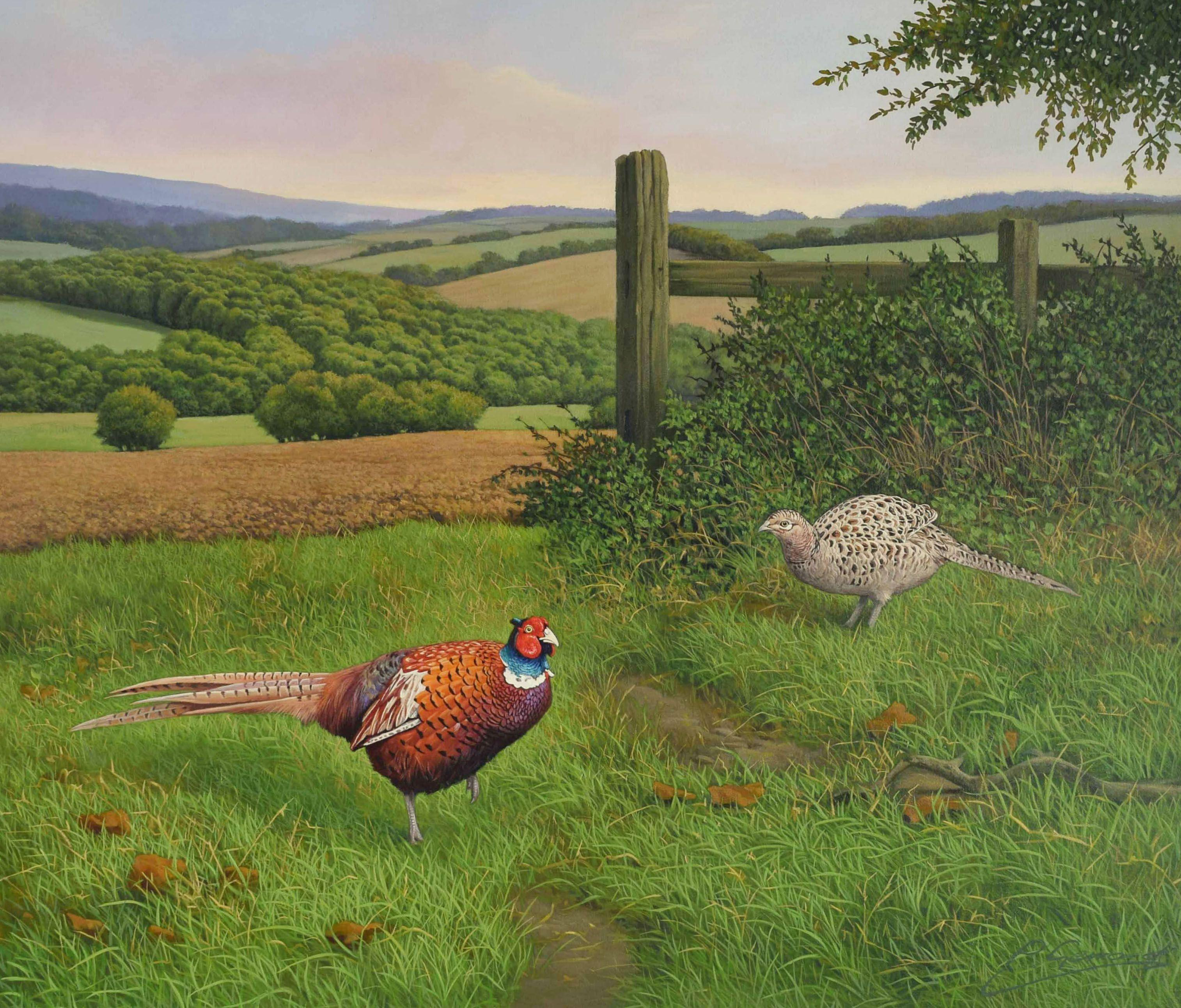 FORAGING PHEASANTS, Painting, Oil on MDF Panel