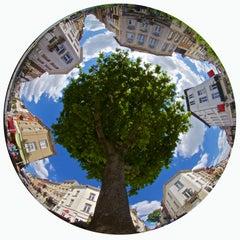 TREE ON SQUARE-CONTEMPORARY PHOTO-COLOUR PHOTO-FISHEYE-CITYSCAPE-NATURE-HEXAGON