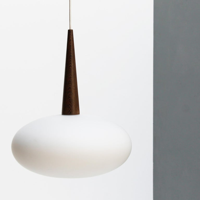 Mid-20th Century Philips Pendant Lamp by Louis Kalff, Dutch 1950s For Sale