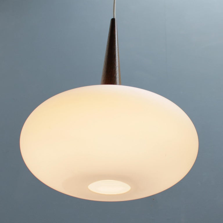Philips Pendant Lamp by Louis Kalff, Dutch 1950s For Sale 1