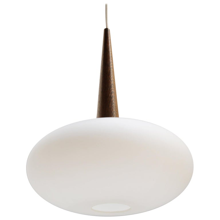 Philips Pendant Lamp by Louis Kalff, Dutch 1950s For Sale