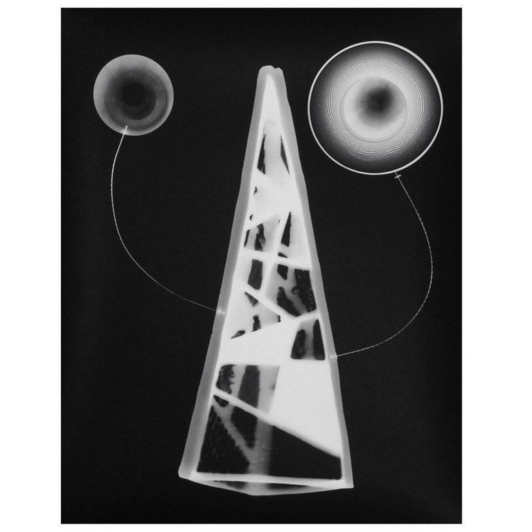 Photogram No. 4 by Timothy Reagan For Sale