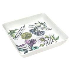 "Piero Fornasetti ""Botanica Pratica"" Porcelain Serving Bowl Vintage"