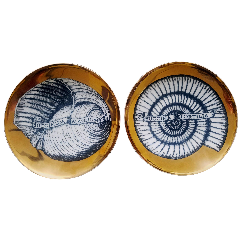Piero Fornasetti Porcelain Gilt Pair of Seashell Plates, Conchyliorum Pattern