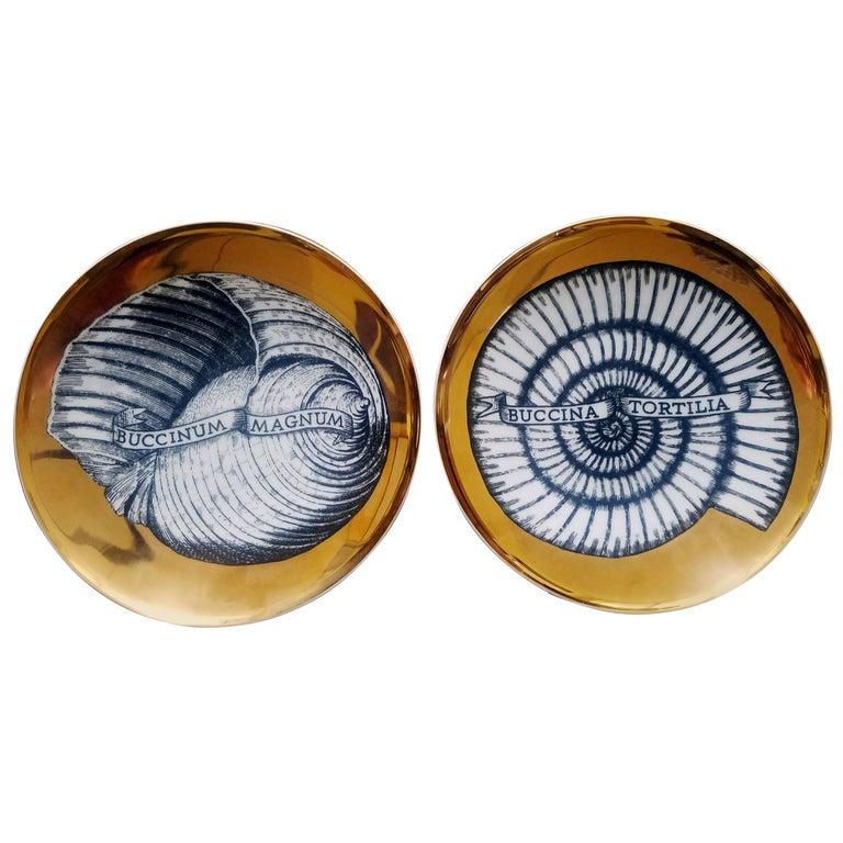 Piero Fornasetti Porcelain Gilt Pair of Seashell Plates, Conchyliorum Pattern For Sale