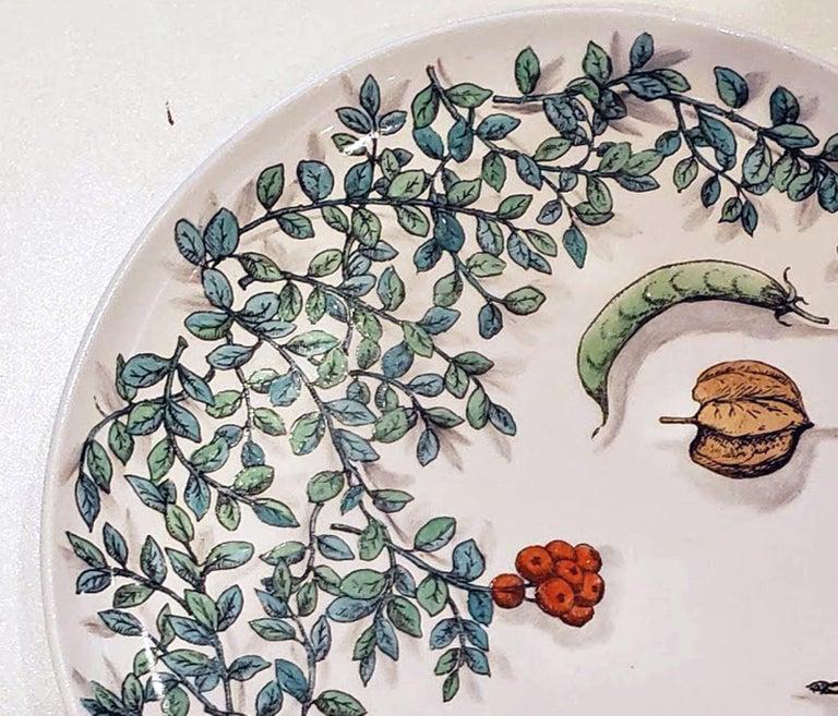 Mid-20th Century Piero Fornasetti Pottery Vegetalia Plate, #10 Morino, 1955 For Sale