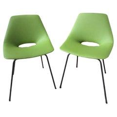Pierre Guariche, Pair of Chairs Model Tonneau