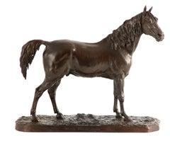 A late 19th century bronze of the Arabian Stallion 'Ibrahim'