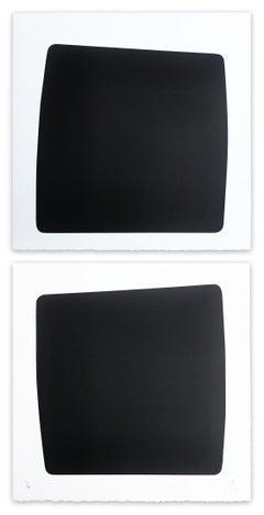 XXI 41 117 (Abstract Print)