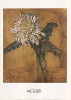 1996 After Piet Mondrian 'Chrysanthemum' Modernism Brown Netherlands Offset